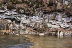 μικρός καταρράκτης Ποταμός βουνών Carpathians Στοκ Εικόνα