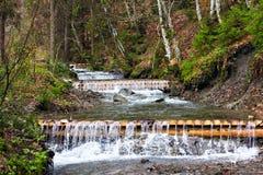 μικρός καταρράκτης Ποταμός βουνών Carpathians Στοκ εικόνες με δικαίωμα ελεύθερης χρήσης