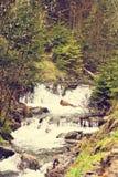 μικρός καταρράκτης Ποταμός βουνών Carpathians Στοκ εικόνα με δικαίωμα ελεύθερης χρήσης