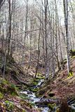 μικρός καταρράκτης Ποταμός βουνών Carpathians Στοκ Φωτογραφίες