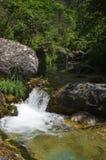 μικρός καταρράκτης ποταμών βουνών Στοκ Εικόνες