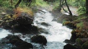 Μικρός καταρράκτης που ρέει κάτω από τους βράχους, ποταμός βουνών που οργίζονται μεταξύ των βράχων στα δασικά, καυκάσια βουνά, Ευ απόθεμα βίντεο