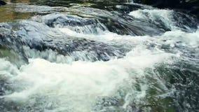 Μικρός καταρράκτης σε έναν ποταμό βουνών απόθεμα βίντεο
