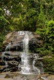 Μικρός καταρράκτης στη ζούγκλα στους βράχους στοκ φωτογραφίες με δικαίωμα ελεύθερης χρήσης