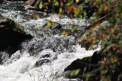 Μικρός κρυμμένος ποταμός Στοκ εικόνα με δικαίωμα ελεύθερης χρήσης