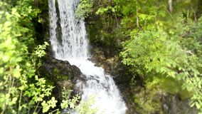 Μικρός πετρών απότομων βράχων καταρράκτης ποταμών βουνών δασικός στο πράσινο τοπίο φύσης δέντρων άγριο κατά 4k τη σταθερή άποψη απόθεμα βίντεο