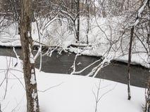 Μικρός ποταμός με τα δέντρα το χειμώνα στοκ εικόνα