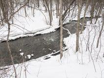 Μικρός ποταμός με τα δέντρα το χειμώνα στοκ εικόνες