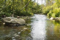 Μικρός ποταμός με τα ρεύματα ποταμού Στοκ φωτογραφία με δικαίωμα ελεύθερης χρήσης