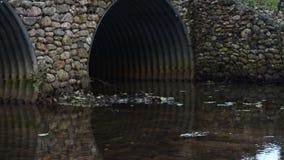 Μικρός ποταμός που διατρέχει μιας γέφυρας φιλμ μικρού μήκους