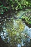 Μικρός ποταμός ρυακιών Στοκ φωτογραφία με δικαίωμα ελεύθερης χρήσης