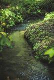 Μικρός ποταμός ρυακιών Στοκ εικόνα με δικαίωμα ελεύθερης χρήσης