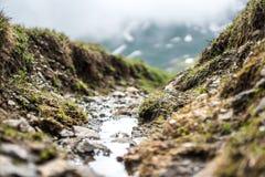 Μικρός ποταμός στα βουνά Στοκ Εικόνες