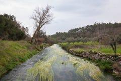 Μικρός ποταμός Στοκ φωτογραφίες με δικαίωμα ελεύθερης χρήσης