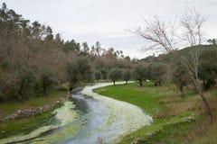 Μικρός ποταμός Στοκ εικόνες με δικαίωμα ελεύθερης χρήσης