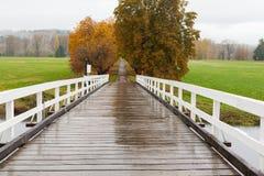 Μικρός δρόμος στην υγρή εποχή πτώσης Στοκ εικόνα με δικαίωμα ελεύθερης χρήσης
