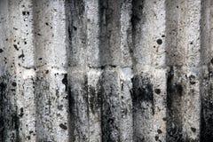 μικρός τοίχος σύστασης φυτών ανασκόπησης Στοκ εικόνες με δικαίωμα ελεύθερης χρήσης