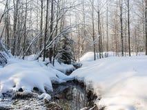 μικρός χειμώνας ποταμών Στοκ Φωτογραφία