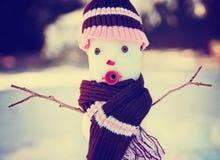 Μικρός χιονάνθρωπος στο χιόνι με ένα πλεκτά καπέλο και ένα μαντίλι Στοκ Εικόνες