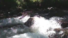Μικρός όμορφος καταρράκτης στα βουνά Sayan απόθεμα βίντεο