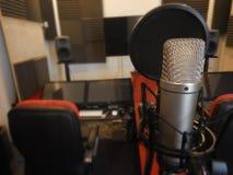 Μικρόφωνο σε ένα μουσικό όργανο στούντιο καταγραφής Στοκ εικόνες με δικαίωμα ελεύθερης χρήσης