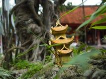 Μικρό δέντρο ναών και μπονσάι Στοκ Εικόνες