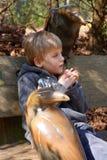 Μικρό αγόρι στον πάγκο με δύο κόρακες Στοκ Φωτογραφίες