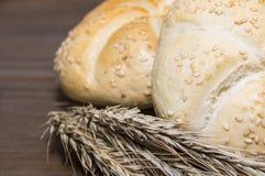 Μικρό αυτί ψωμιού και σίτου στοκ φωτογραφία με δικαίωμα ελεύθερης χρήσης