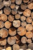 Μικρό κομμάτι των φυσικών ξύλινων κούτσουρων που χρησιμοποιούνται για διακοσμημένο το σχέδιο τοίχο Στοκ Φωτογραφία