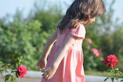 Μικρό κορίτσι και κόκκινα τριαντάφυλλα backgroundb Στοκ φωτογραφίες με δικαίωμα ελεύθερης χρήσης