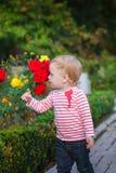 Μικρό κορίτσι και λουλούδια των τριαντάφυλλων στοκ φωτογραφία