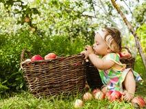 Μικρό κορίτσι με ένα καλάθι των κόκκινων μήλων Στοκ Εικόνα