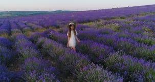 Μικρό κορίτσι με μακρυμάλλη φορώντας ένα καπέλο αχύρου που περπατά στο lavender τομέα σε σε αργή κίνηση απόθεμα βίντεο