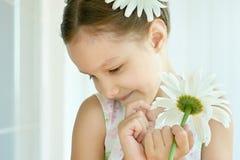 Μικρό κορίτσι με τα λουλούδια dasies Στοκ εικόνα με δικαίωμα ελεύθερης χρήσης