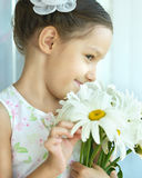 Μικρό κορίτσι με τα λουλούδια dasies Στοκ εικόνες με δικαίωμα ελεύθερης χρήσης