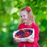 Μικρό κορίτσι με τα φρέσκα μούρα σε ένα καλάθι Στοκ Εικόνα