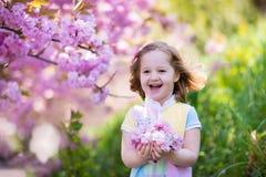 Μικρό κορίτσι με το άνθος κερασιών Στοκ Φωτογραφία