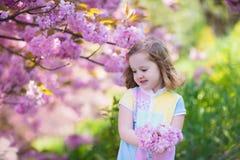 Μικρό κορίτσι με το άνθος κερασιών Στοκ εικόνες με δικαίωμα ελεύθερης χρήσης