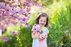 Μικρό κορίτσι με το άνθος κερασιών Στοκ Εικόνες