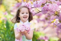 Μικρό κορίτσι με το άνθος κερασιών Στοκ Εικόνα