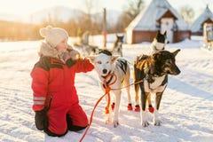 Μικρό κορίτσι με το γεροδεμένο σκυλί Στοκ φωτογραφία με δικαίωμα ελεύθερης χρήσης