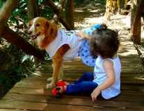 Μικρό κορίτσι με το σκυλί Στοκ Φωτογραφία