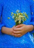 Μικρό κορίτσι με camomile τα λουλούδια Στοκ εικόνες με δικαίωμα ελεύθερης χρήσης