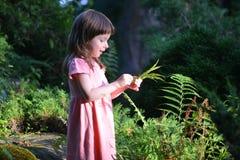 Μικρό κορίτσι που απολαμβάνει τη φύση Στοκ εικόνα με δικαίωμα ελεύθερης χρήσης