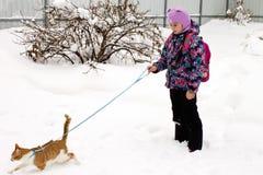 Μικρό κορίτσι που περπατά με μια εσωτερική γάτα στο χιόνι στοκ εικόνα