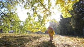 Μικρό κορίτσι που περπατά στο πάρκο, παιδί που κρατά μια ανθοδέσμη των κίτρινων φύλλων απόθεμα βίντεο