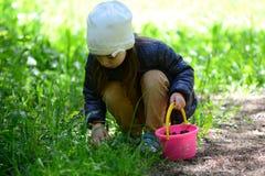 Μικρό κορίτσι που συλλέγει τα μανιτάρια Στοκ Φωτογραφίες