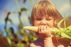 Μικρό κορίτσι που τρώει το καλαμπόκι Στοκ Εικόνα