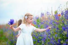 Μικρό κορίτσι που φορά το άσπρο φόρεμα που επιλέγει τα μπλε άγρια λουλούδια σε ένα φ Στοκ φωτογραφία με δικαίωμα ελεύθερης χρήσης