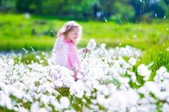 Μικρό κορίτσι σε έναν τομέα λουλουδιών Στοκ φωτογραφία με δικαίωμα ελεύθερης χρήσης